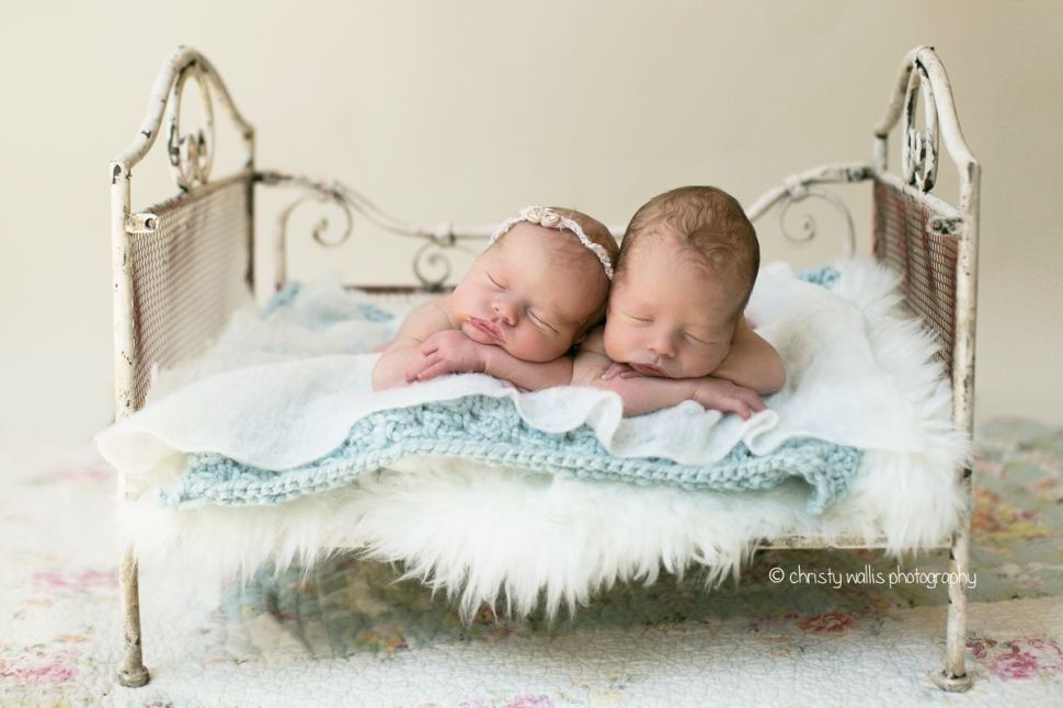 Kriech twins san diego newborn photographer
