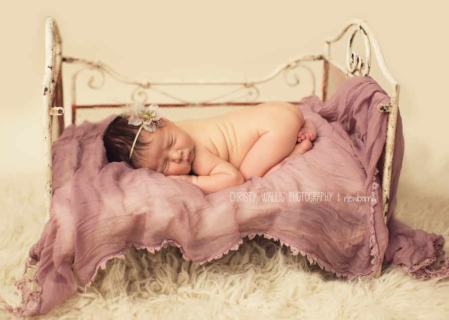 And slept through the whole session definitely makes my job as a newborn photographer like a dream san diego baby photographer ·